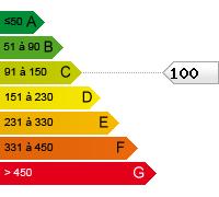 C (100)