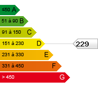 D (229)