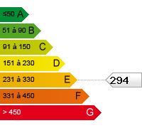 E (294)