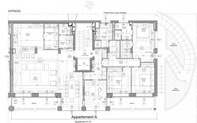 Grand appartement entièrement rénové