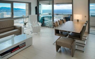 MONTE CARLO VIEW : Very airy home