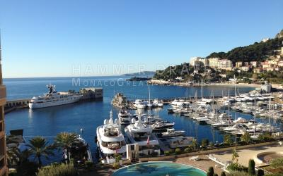 TERRASSES DU PORT : grand appartement familial