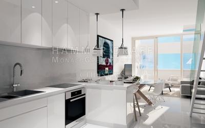 Newly built : Elegant and bright duplex