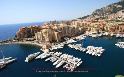 Refurbished apartment - Fontvieille Marina