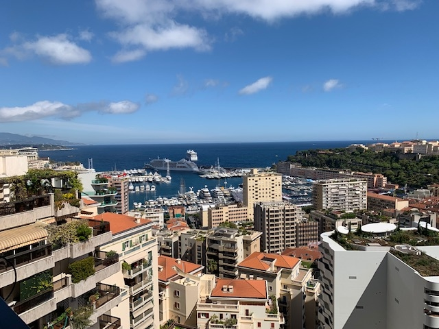 Viager occupied without rent - Offices for sale in Monaco