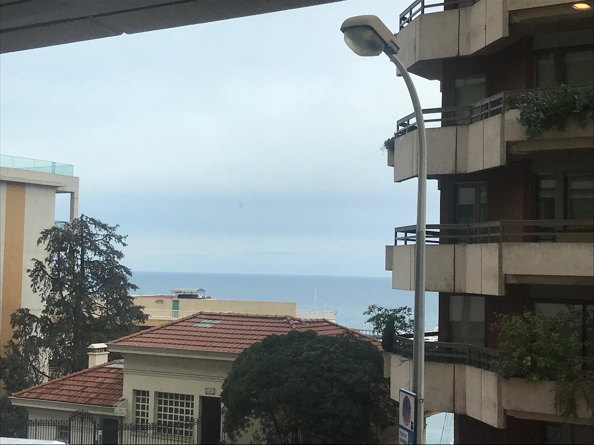 STUDIO USAGE MIXTE HERAKLEIA - Bureaux à vendre à Monaco