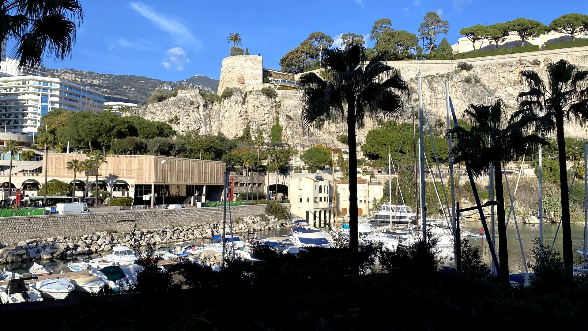 MONACO FONTVIEILLE GIOTTO 3 ROOMS PRIVATE ENTRY MIXTE CELLAR - Offices for sale in Monaco