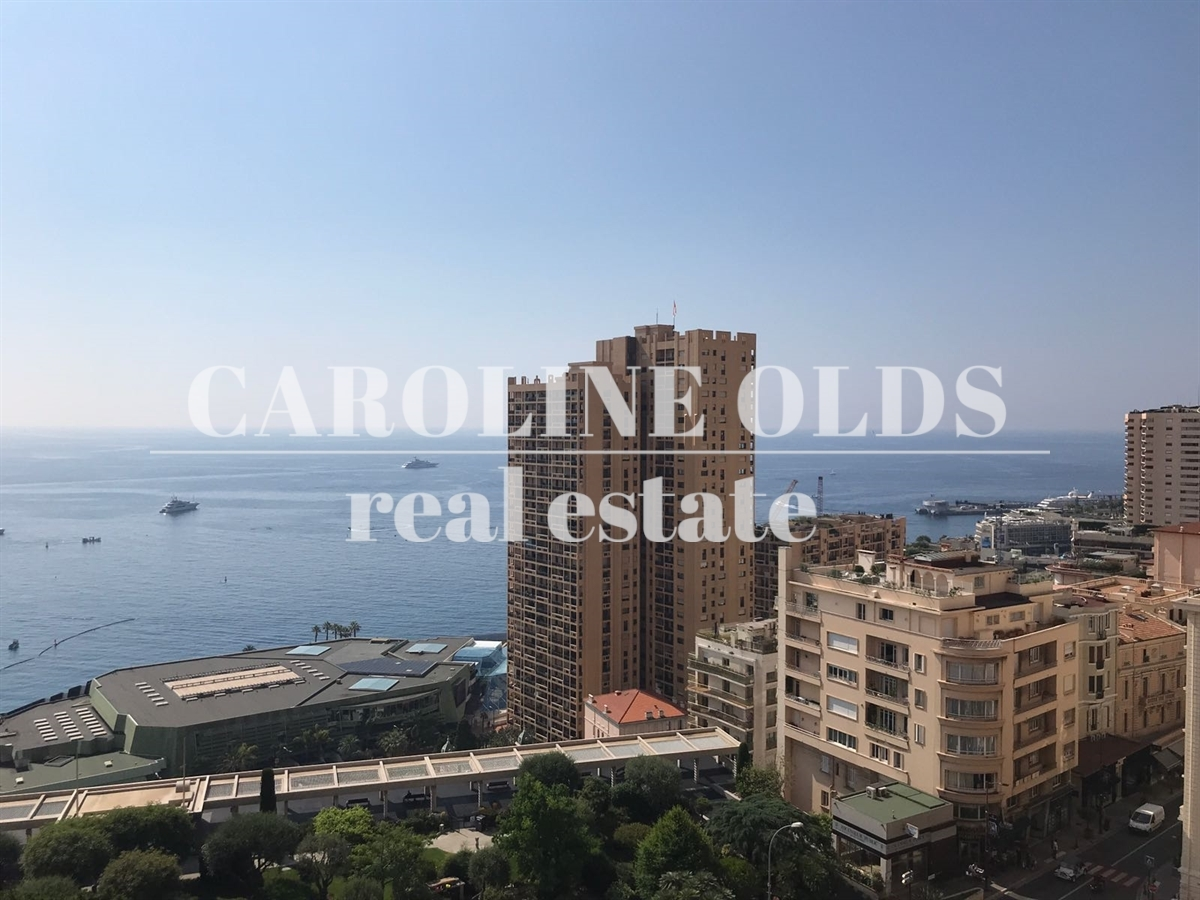 1-2 piece | Priced to sell | Continental - Offices for sale in Monaco